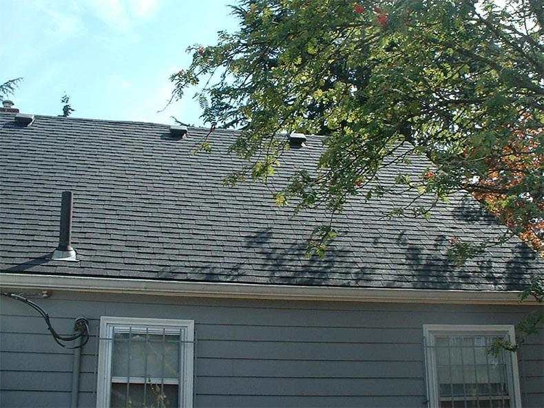 After Roof Cleaning Vancouver Washington