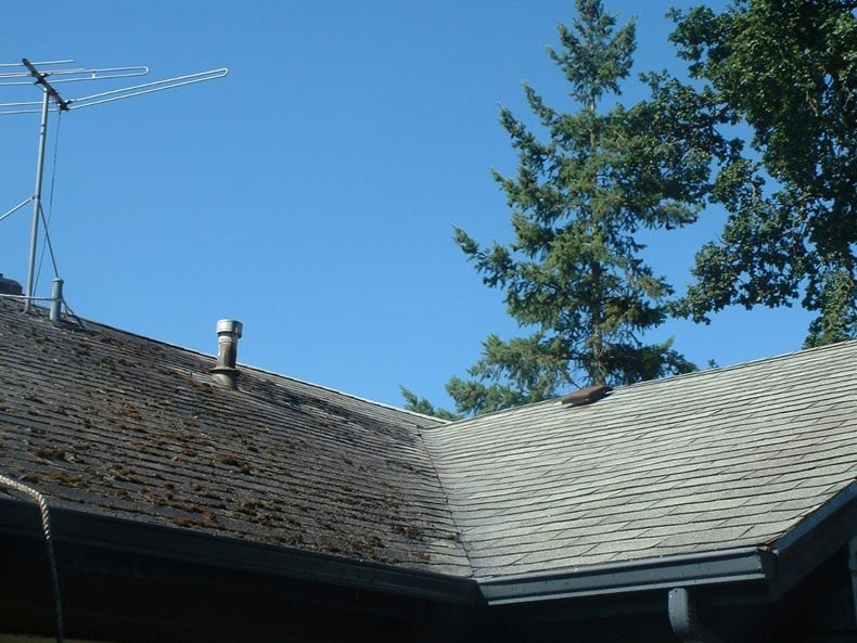 Before & After Roof Cleaning West Linn Oregon