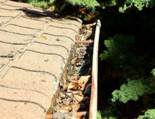 Gutter cleaning can be a real hassle. Find out how to take the hassle out of it.