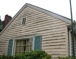Before siding cleaning