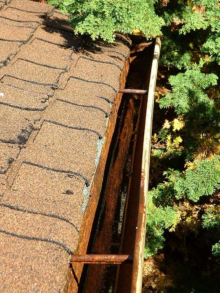 Start With Roof Cleaning When Maintaining Your Home's Exterior