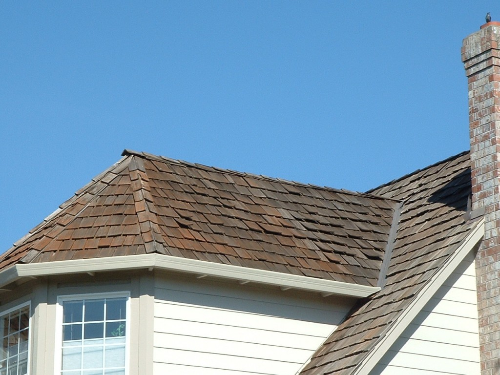 Why not to stain a roof