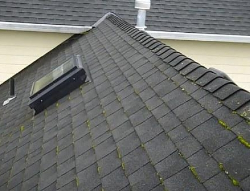Why is roof moss removal so important especially if you live in Portland Oregon?