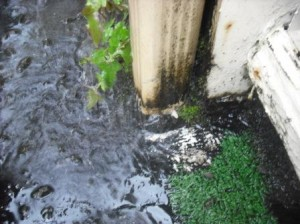 Bottom of downspout clog