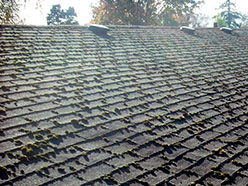 composition-roof-cleaning-before