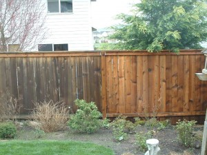 Pressured washed fence - before and after
