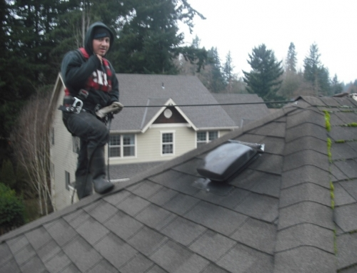 Why Every Portland Homeowner Should Have a Roof Maintenance Plan