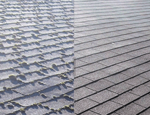 Why Should You Clean Your Roof?