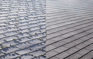 Why Should You Clean Your Roof