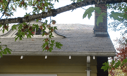 after roof cleaning - Roof Cleaning