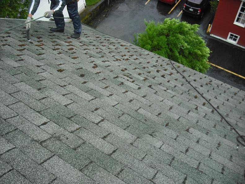 Before Roof Cleaning Hillsboro Oregon