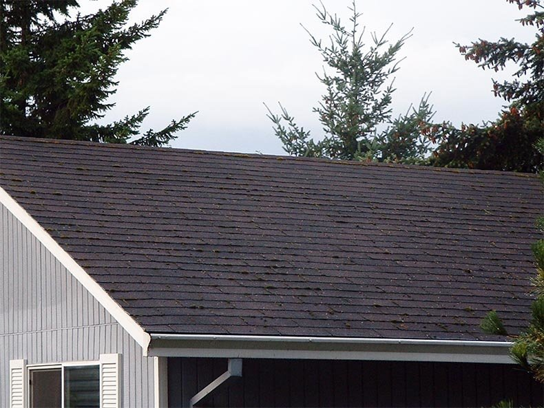 Before Roof Cleaning Tualatin