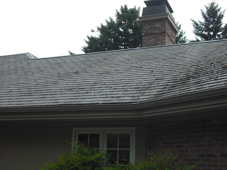 Before Roof Cleaning Lake Oswego Oregon