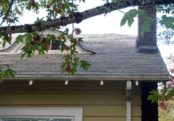 Why is roof cleaning for Oregonians so important?