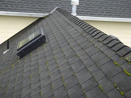 Determining when roof moss removal is necessary can be difficult.