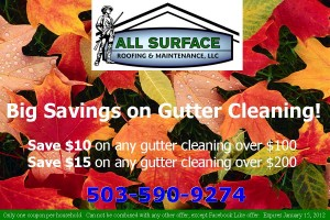Website Coupon - Gutter Cleaning
