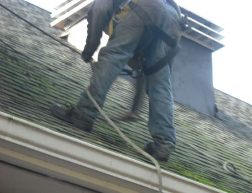 Steep Roofs – No Problem, We Clean Them All!