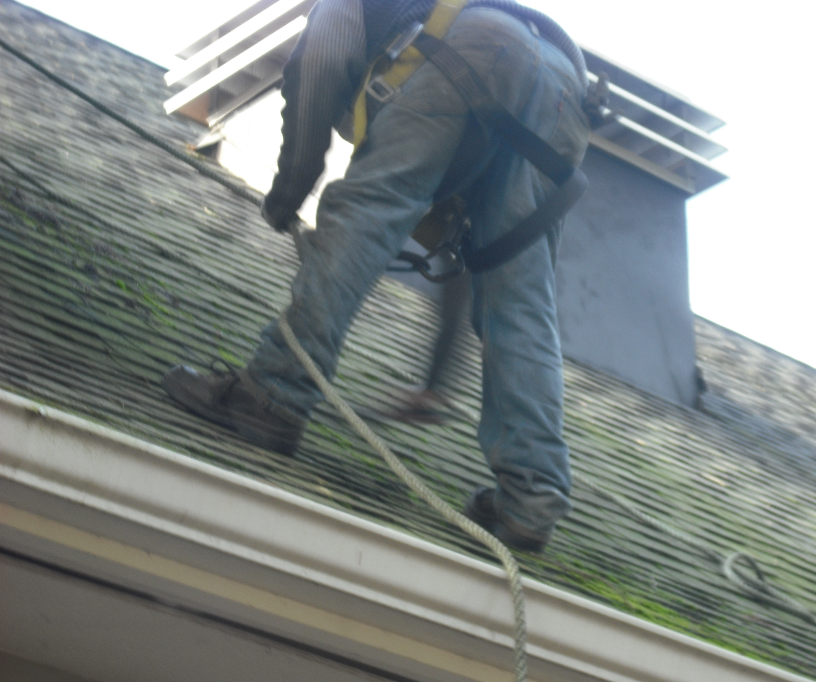 Everything You Need To Know About Roof Cleaning In Portland
