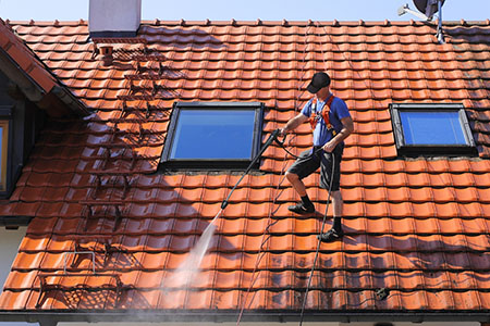 Danville Roof Cleaning